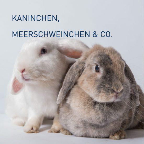 KANINCHEN, MEERSCHWEINCHEN & CO.